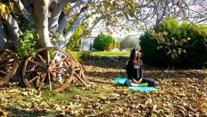 Canan Korkmaz ile Karadeniz'in muhteşem doğasında nefes çalışmaları ile içinizi temizleyin, meditasyonla ruhunuzu dinlendirin.