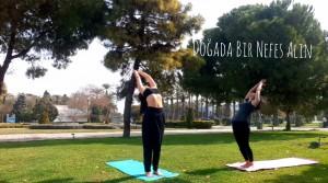 Özel Yoga Dersleri İstanbul Göktürk'te