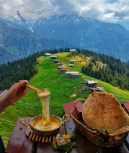 Gurme Karadeniz Yoga ve Doğa seyahatimizde Karadeniz yemeklerini ve kahvaltısının tadına bakacak, Karadeniz kültürünü bir Karadenizli gibi yaşayacağız.