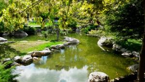 Emirgan Baltalimanı Japon Bahçesi gibi doğal, sakin ve huzurlu yerler yaşama gücünüzü arttırır ve iyileşme sürecinizi hızlandırır. Siz de bizimle doğada yoga, pranayama, nefes, pilates, özel spor derslerine katılın sağlıkla kalın.