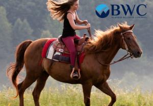 2018 yaz tatilinizi Ayvalık sağlık ve spor kampında geçirin. Atlar ile vakit geçirin, binicilik ile ruhunuzu ve zihninizi dinlendirin.